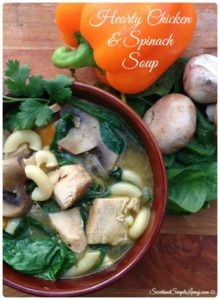 The amazing picture of hearty chicken and spinach soup.