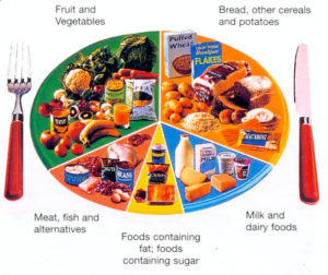 The picture of a 5 point diagram illustrating the major food groups.