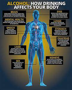 The illustration of the inner parts of the human body, and content explaining the effects alcohol will have on certain sections.